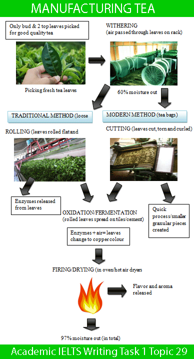 Academic IELTS Writing Task 1 Topic : two different processes for manufacturing black tea – Diagram