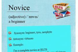 ieltsmaterial.com-word-of-the-day-novice
