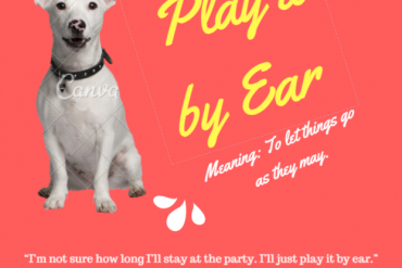 ieltsmaterial.com-play it by ear - idiom of the day
