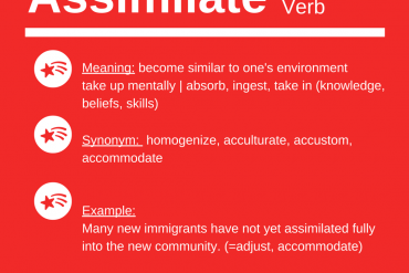 ieltsmaterial.com-word of the day - assimilate