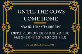 ieltsmaterial.com -until the cows come home