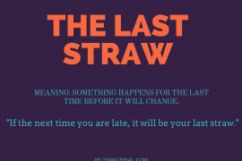 ieltsmaterial.com - the last straw