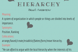 word of the day by ieltsmaterial - hierarchy