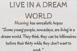idiom of the day by ieltsmaterial - LIVE IN A DREAM WORLD