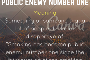 idiom of the day by ieltsmaterial.com - public enemy number one