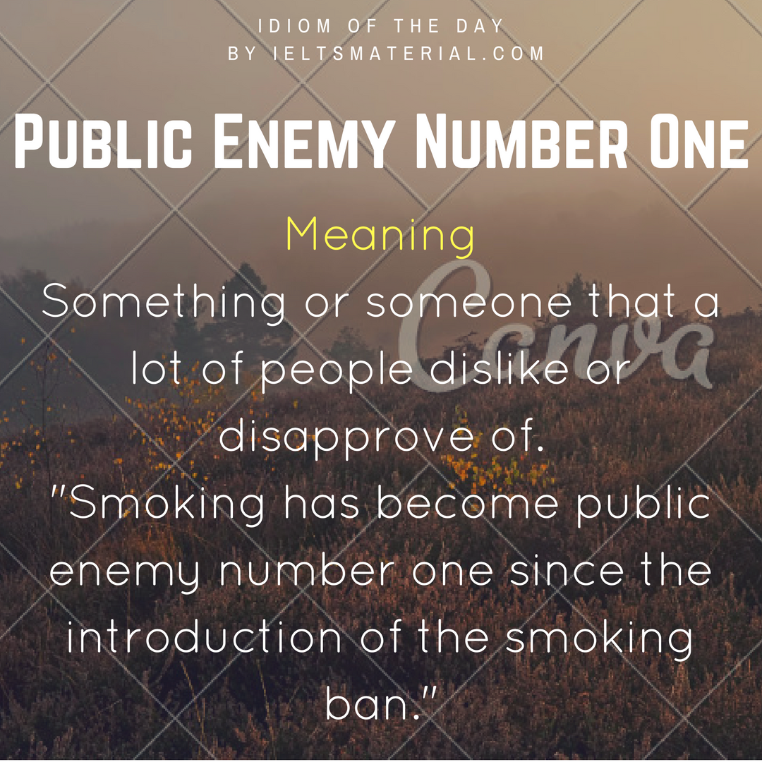 Meaning Something or someone that a lot of people dislike or disapprove of. Smoking has become public enemy number one since the introduction of the smoking ban.