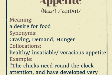 word-of-the-day-by-ieltsmaterial-appetite