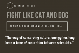 idiom of the day - fight like cat and dog