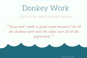 idiom of the day - donkey work