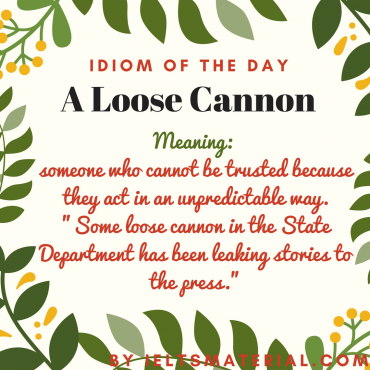 idiom of the day - a losse cannon