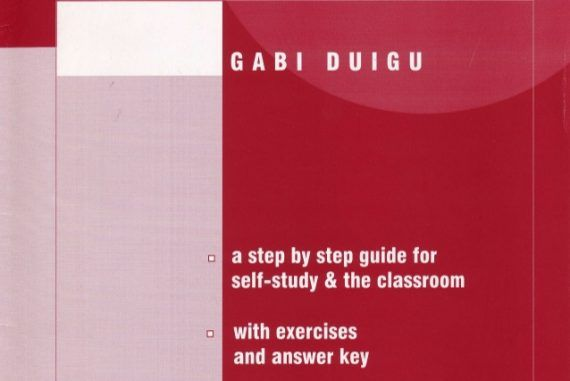 ielts writing task essay writing by gabi duigu ebook