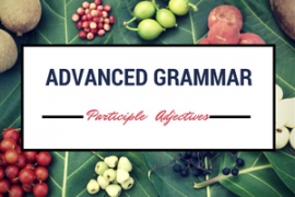 ieltsmaterial-com-participle-adjectives