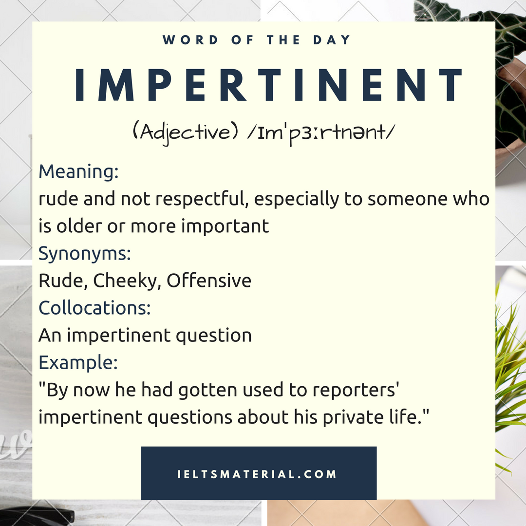word of the day impertinent 1