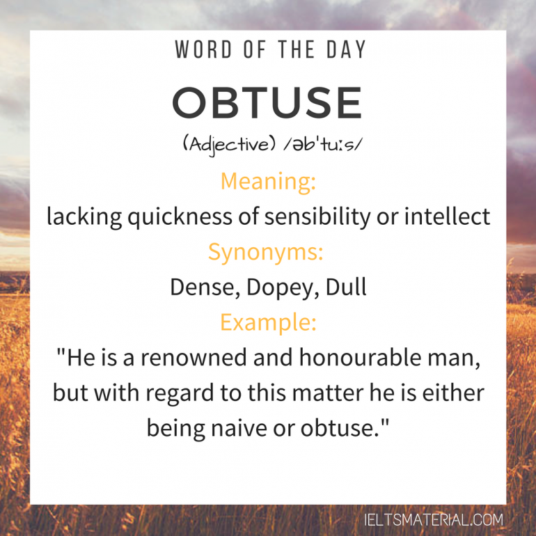 WORD OF THE DAY - OBTUSE