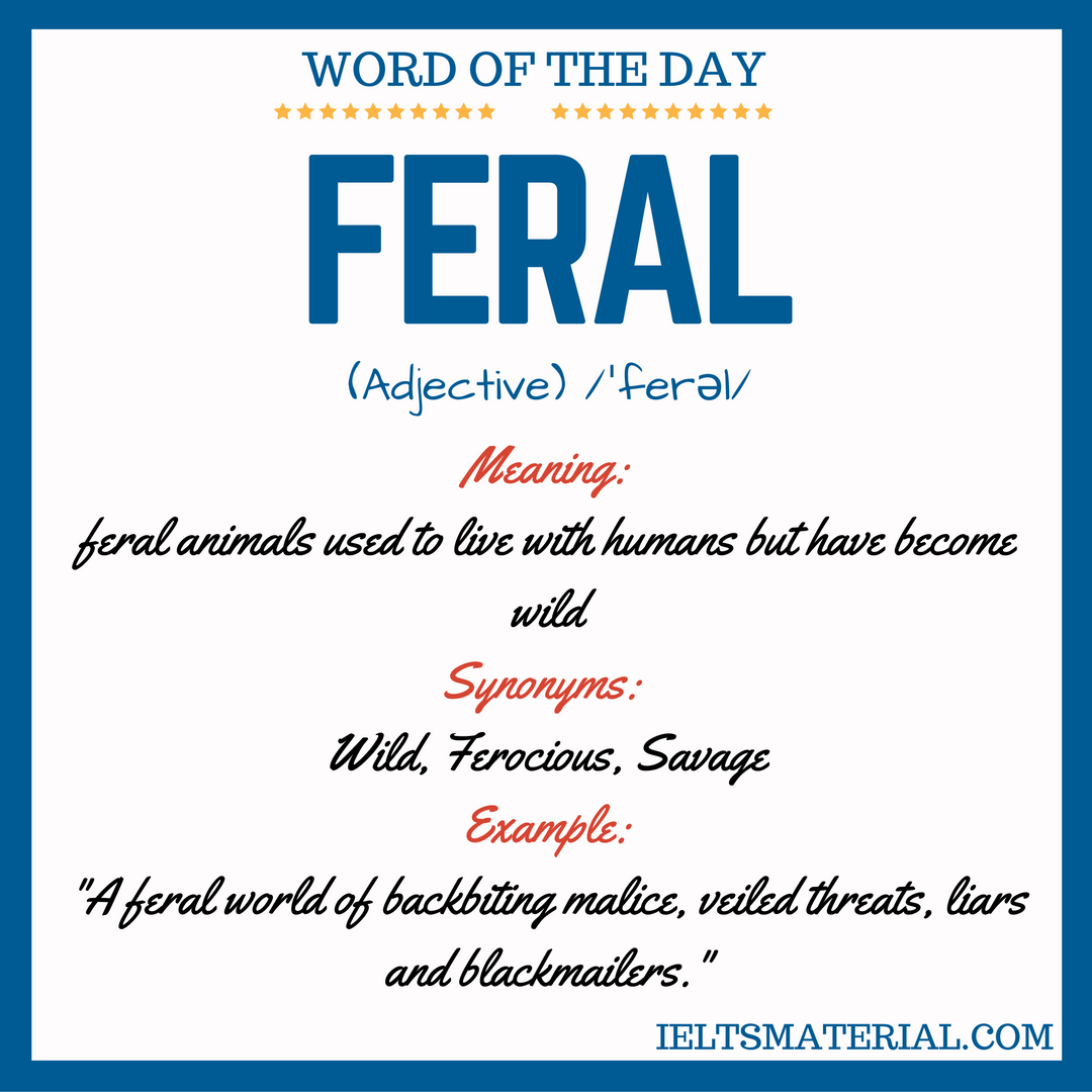 Feral – Word Of The Day For IELTS