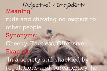 Word of the day - impudent