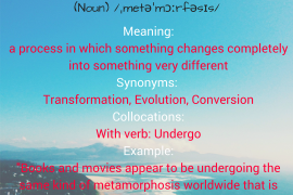 WORD OF THE DAY - metamorphosis