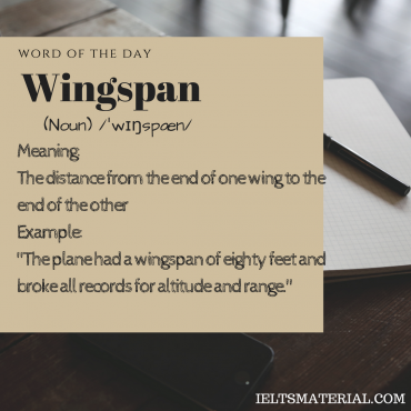 word of the day - wingspan