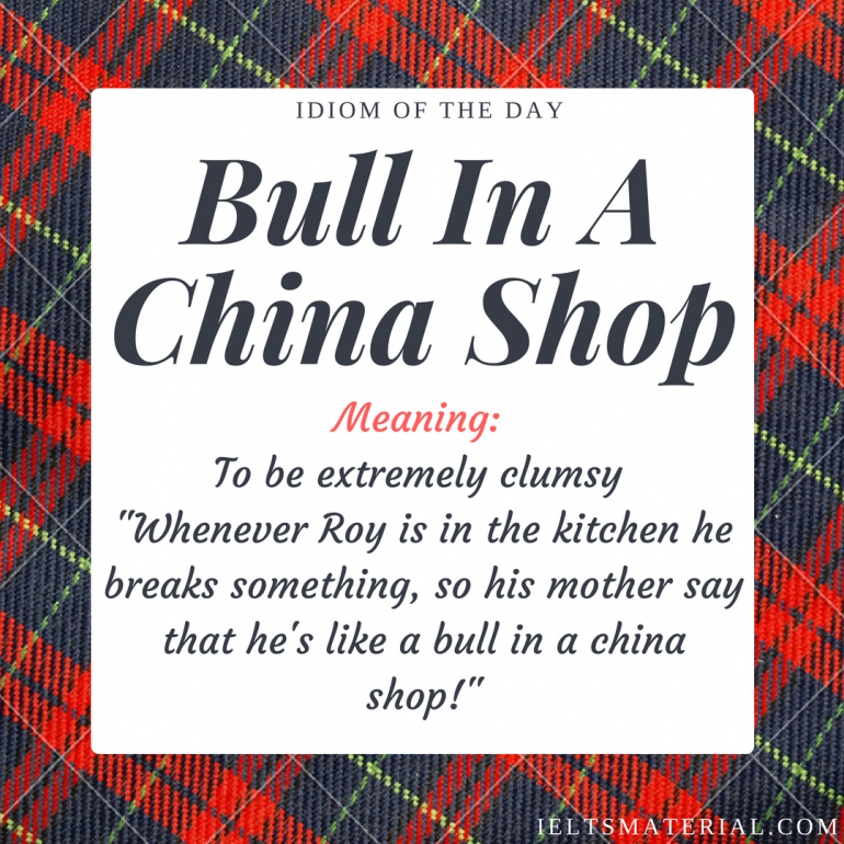 idiom of the day Bull In A China Shop