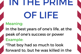 idiom of the day IN THE PRIME OF LIFE