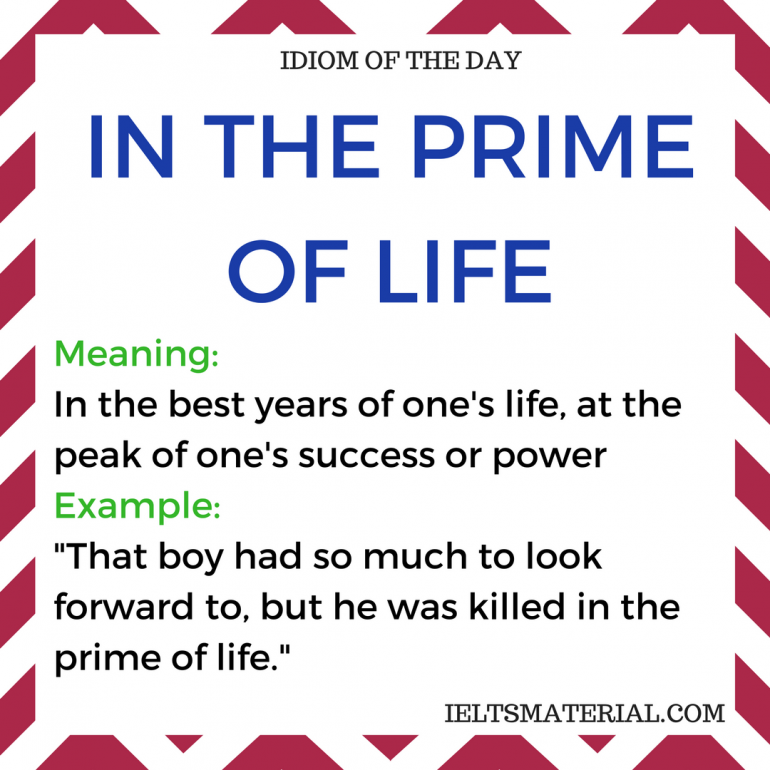 Image result for prime-of--life