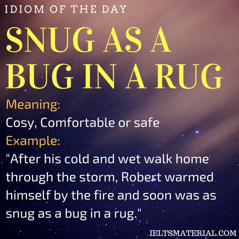 idiom of the day SNUG AS A BUG IN A RUG