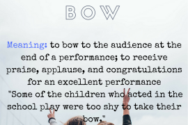 idiom of the day TAKE ONES BOW