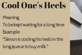 idiom of the day cool ones heel