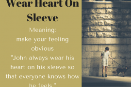 idiom-of-the-day-wear-heart-on-sleeve