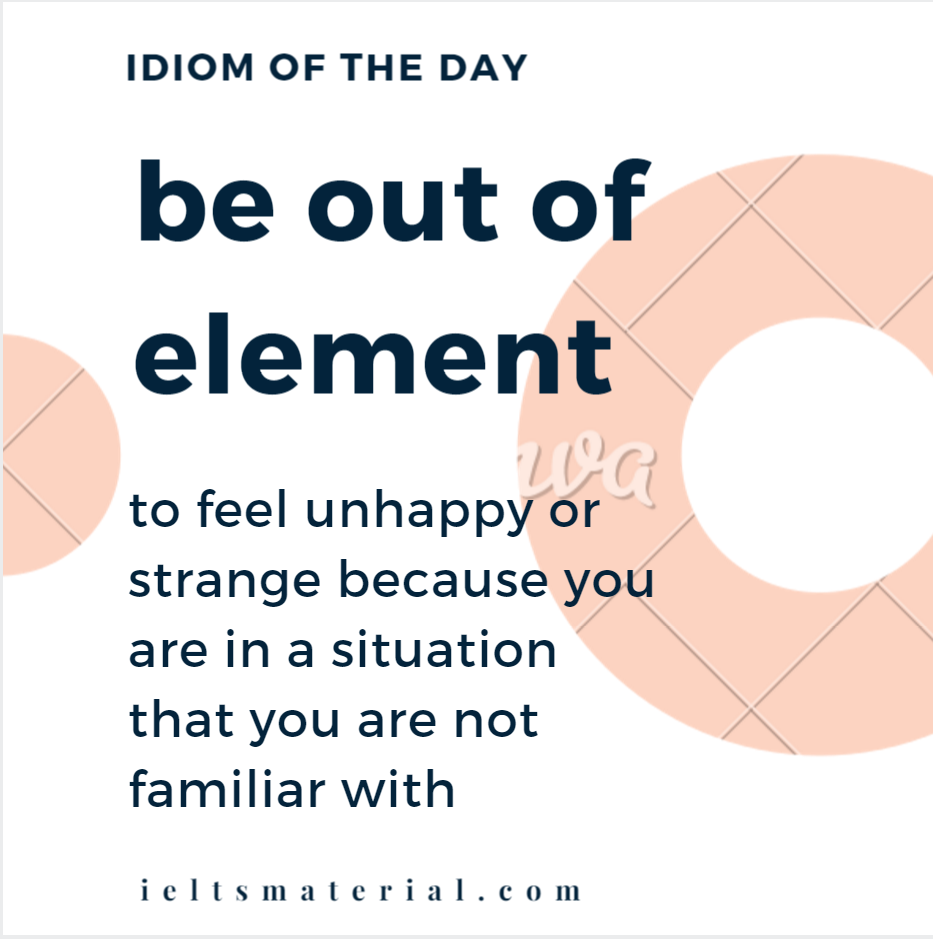 IOTD be out of element