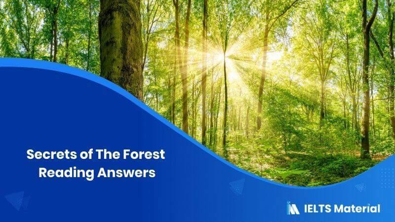 Secrets of The Forest Reading Answers
