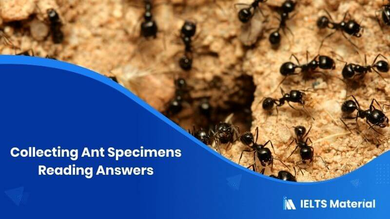 Collecting Ant Specimens Reading Answers