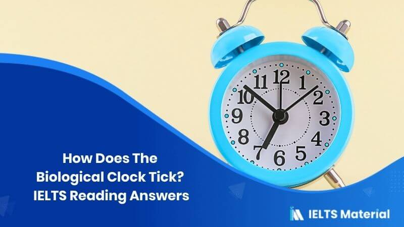 How Does The Biological Clock Tick? IELTS Reading Answers