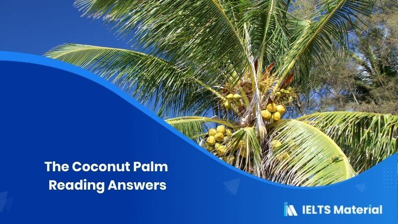 The Coconut Palm Reading Answers