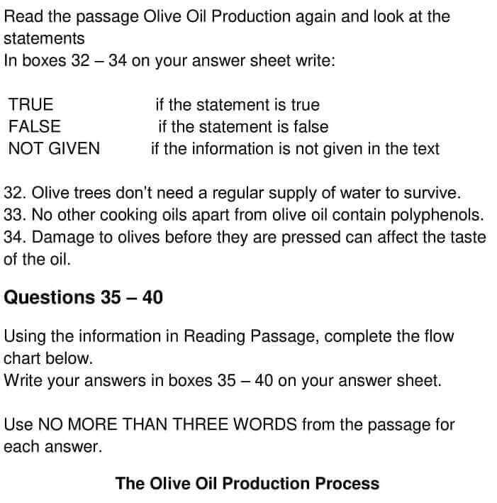 OLIVE OIL PRODUCTION - 0005