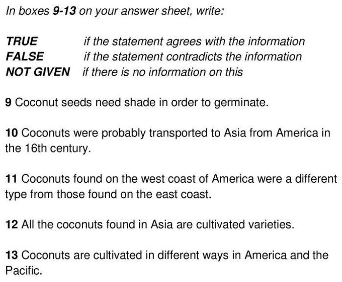 coconut palm - 5