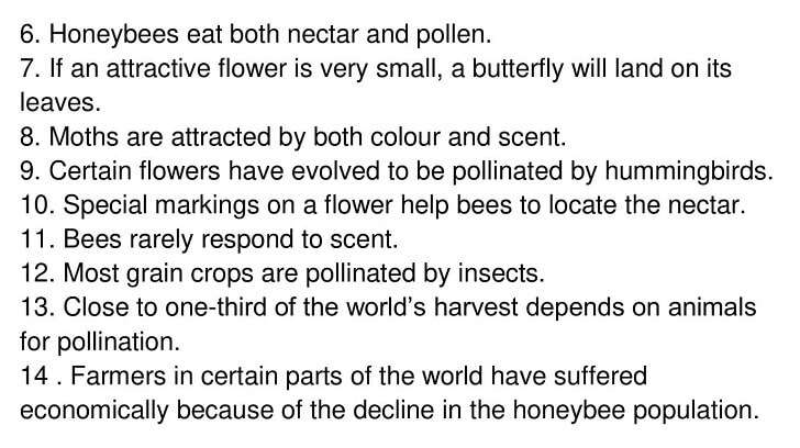 'Pollination' Answers_0005
