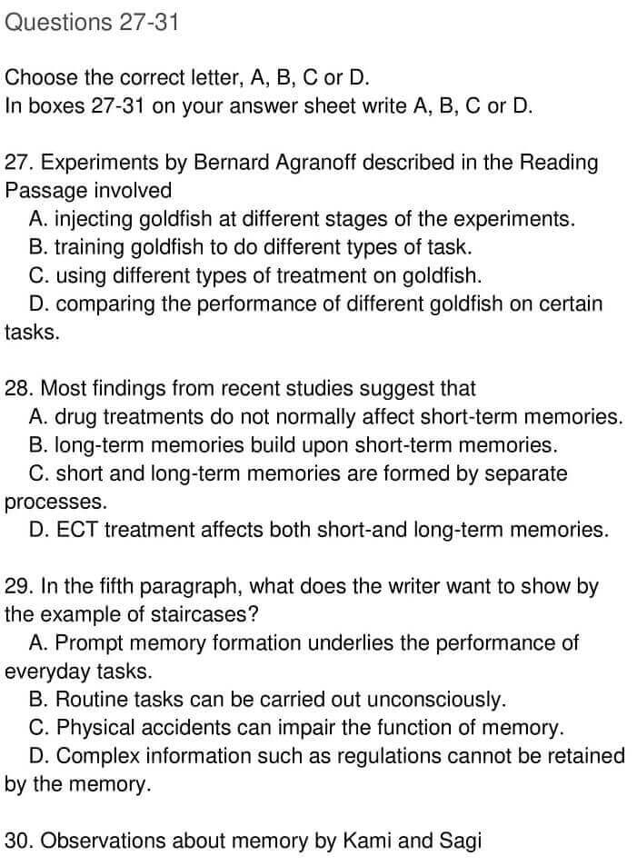 IELTS Academic Reading 'The creation of lasting memories' Answers - 0005