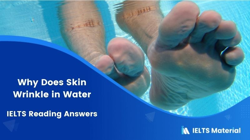 Why does Skin Wrinkle in Water – IELTS Reading Answers