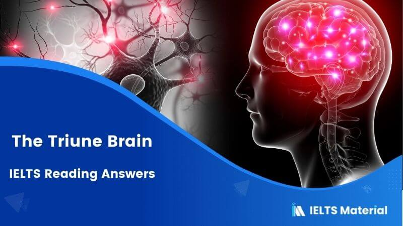 The Triune Brain - IELTS Reading Answers
