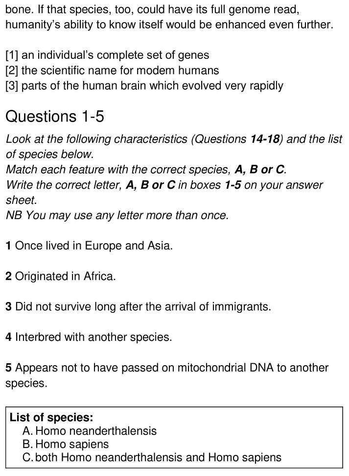 modern humans 4
