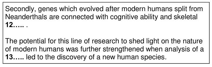 modern humans 6