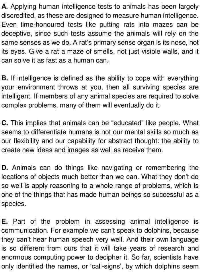 Testing Animal Intelligence - 0001