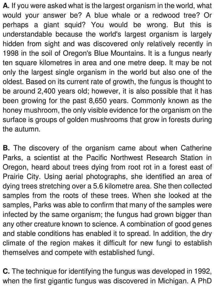 The Humungous Fungus - 0001