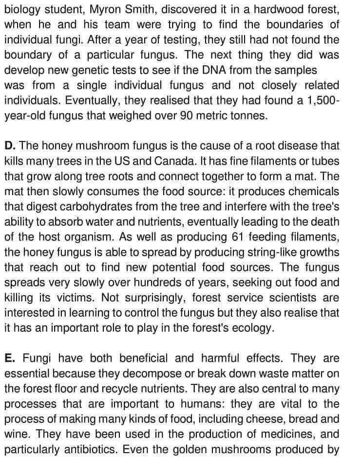 The Humungous Fungus - 0002