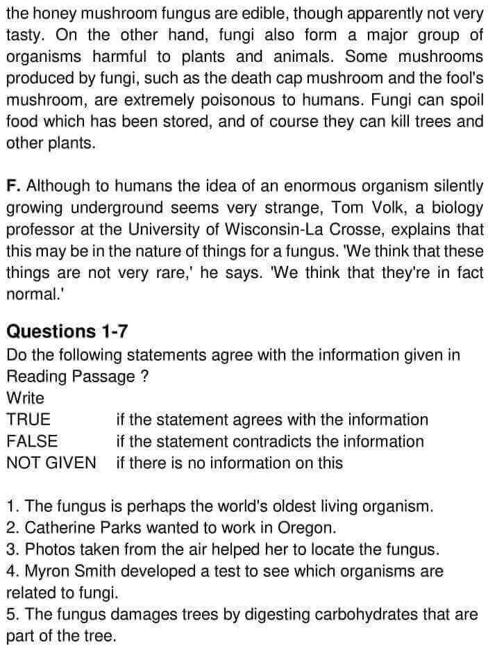 The Humungous Fungus - 0003