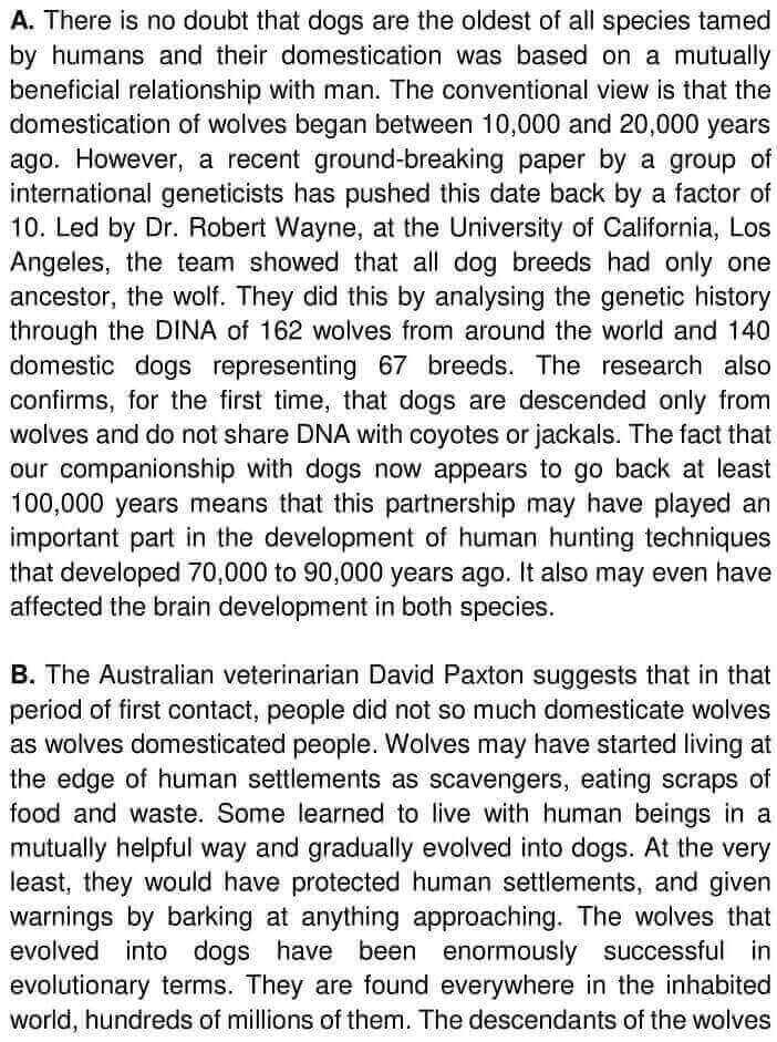 Wolves, Dogs And Humans - 0001