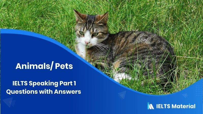 IELTS Speaking Part 1 Questions with Answers - Topic: Animals/ Pets
