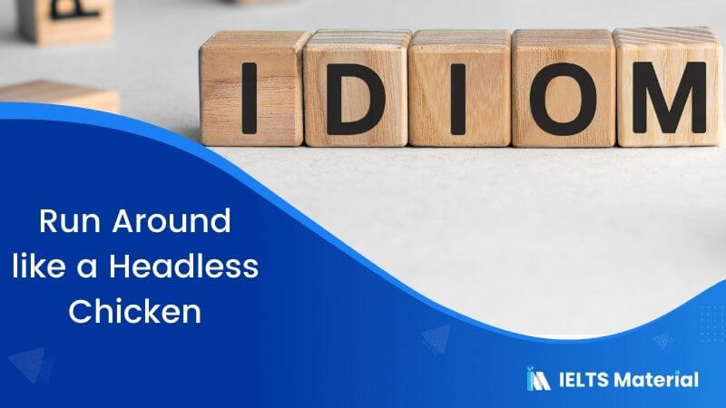 Idiom – Run Around like a Headless Chicken