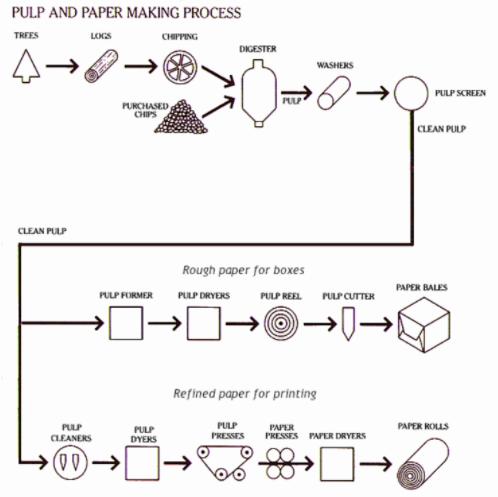 Paper Making Process Diagram